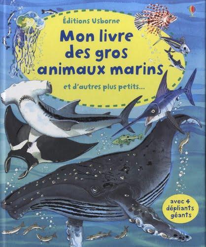 Gros et petits animaux marins